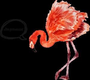flamingo-textcloud-V2